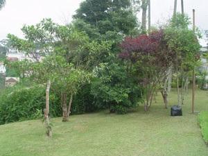 http://www.imobiliariapinheiro.com.br/fotos_imoveis/10224/12.jpg